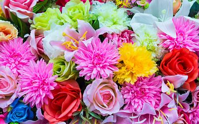 Click image for larger version  Name:flowers.jpg Views:436 Size:211.8 KB ID:24899