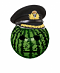 Captain Melon's Avatar
